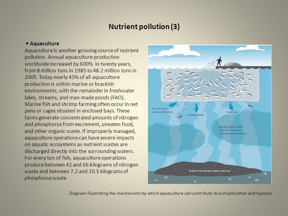 Nutrient pollution (3) • Aquaculture
