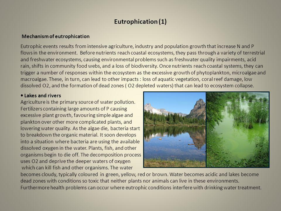 Eutrophication (1) Mechanism of eutrophication