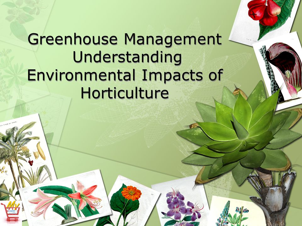 Greenhouse Management Understanding Environmental Impacts of Horticulture