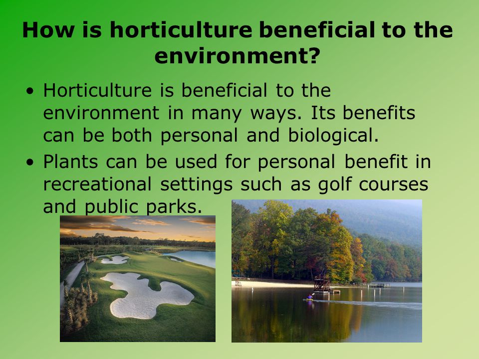 How is horticulture beneficial to the environment