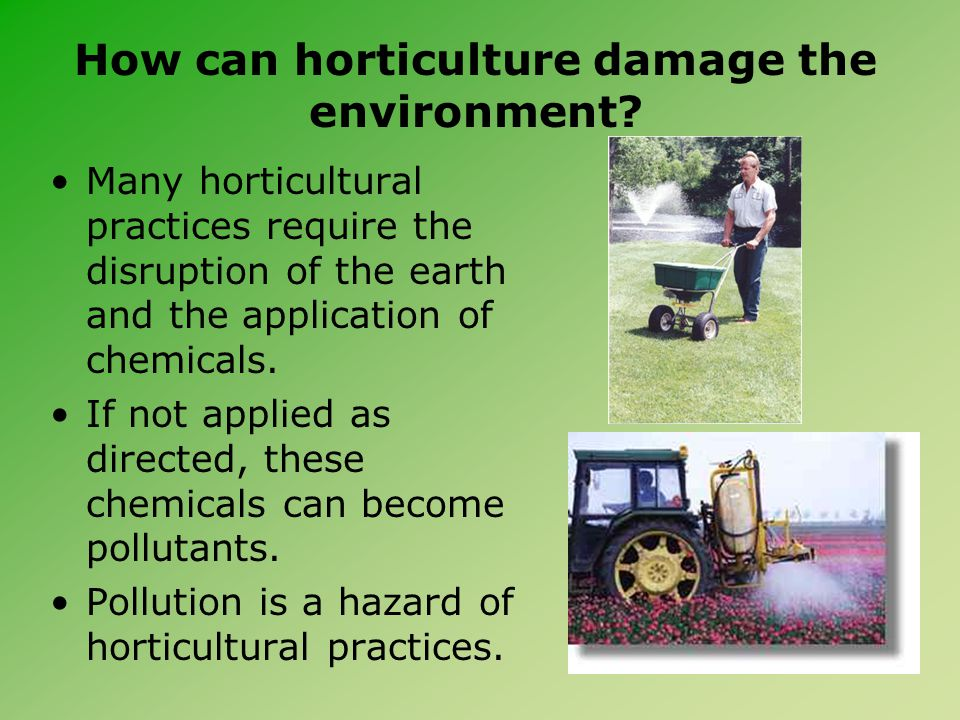 How can horticulture damage the environment