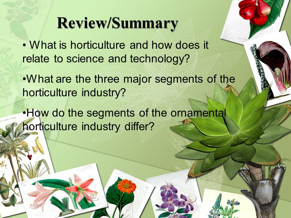 Review/Summary What is horticulture and how does it relate to science and technology
