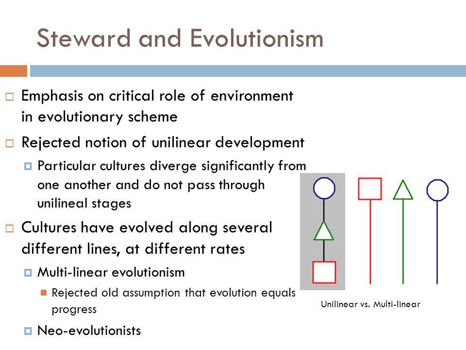 Steward and Evolutionism