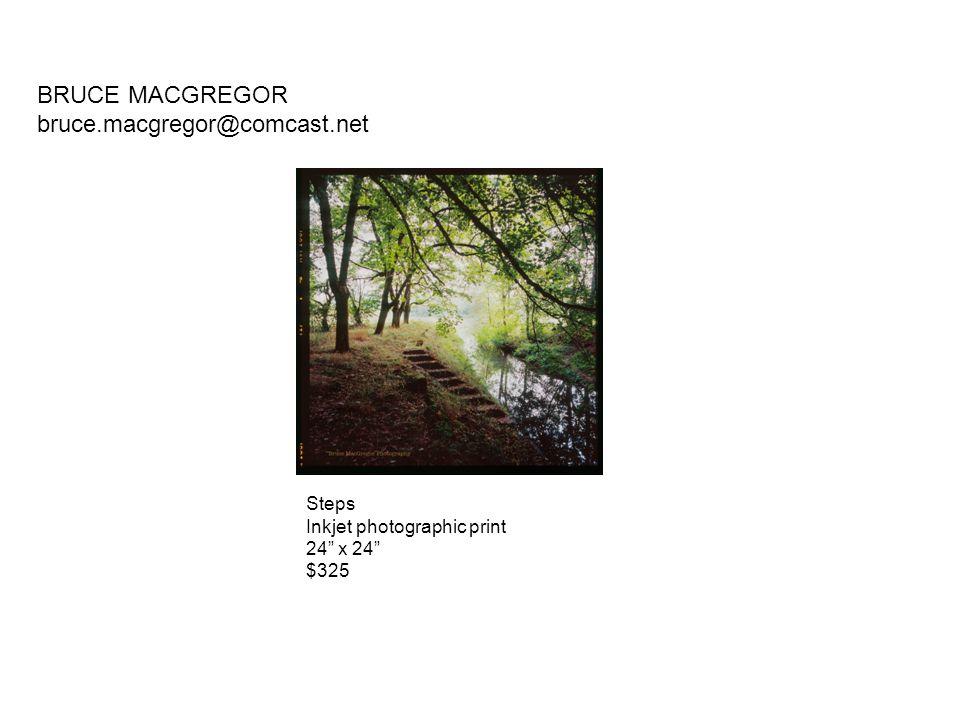 BRUCE MACGREGOR bruce.macgregor@comcast.net Steps