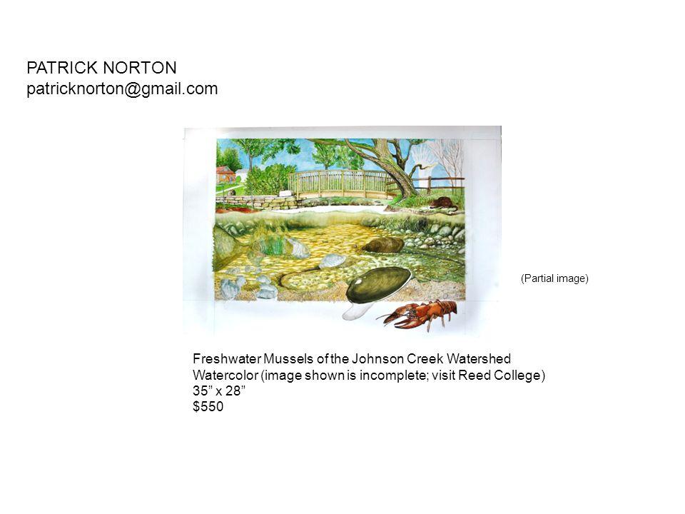 PATRICK NORTON patricknorton@gmail.com