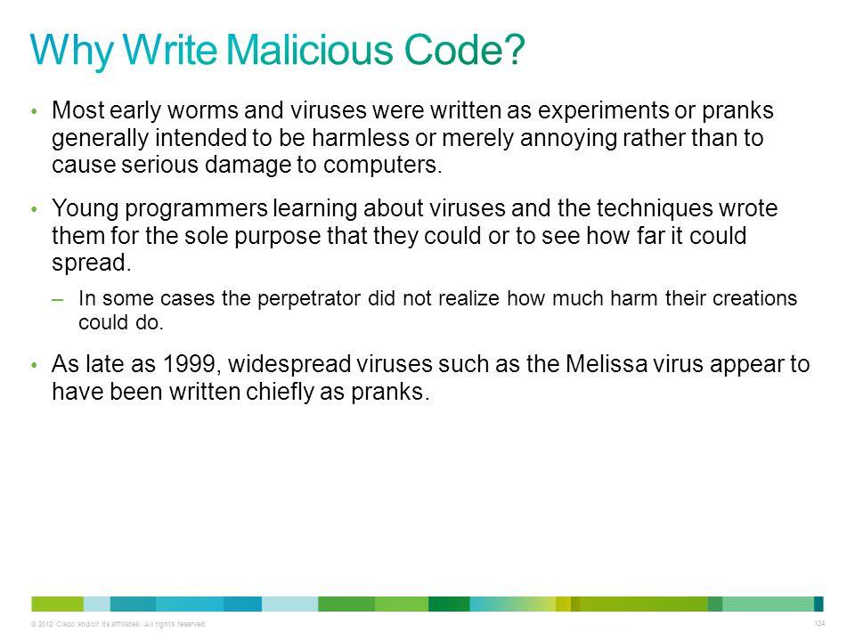 Why Write Malicious Code
