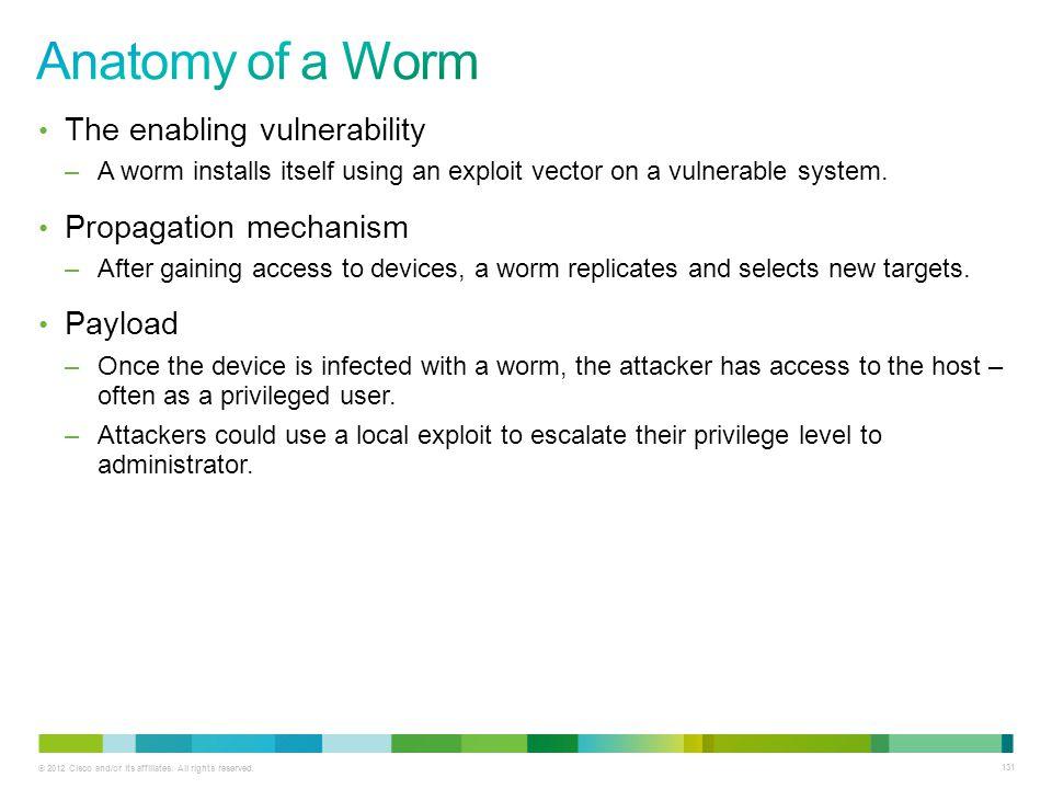 Anatomy of a Worm The enabling vulnerability Propagation mechanism