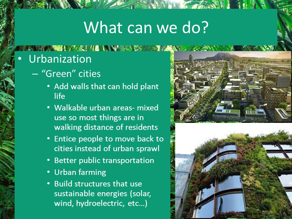What can we do Urbanization Green cities