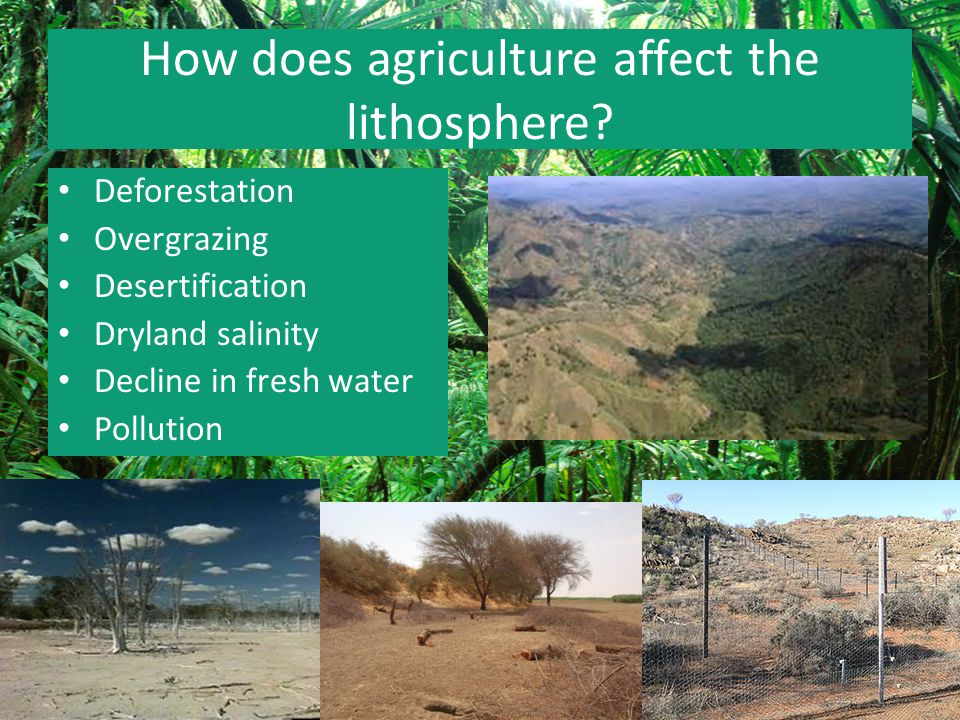 human impact on lithosphere The lithosphere is very important because it is a large reservoir of resources, which are so useful to man  without these fuels human life,.