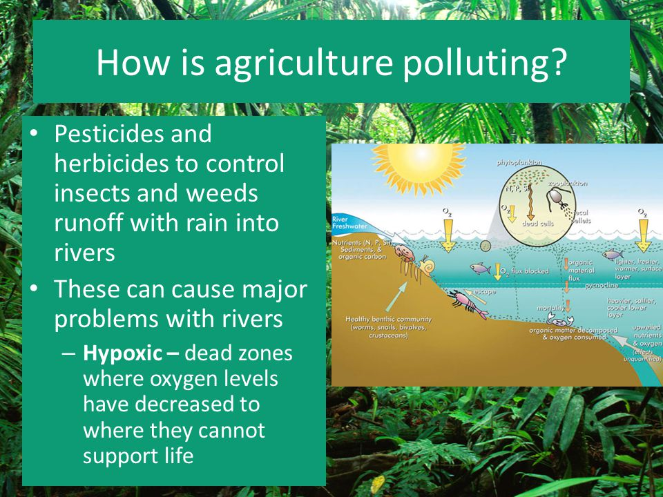 How is agriculture polluting