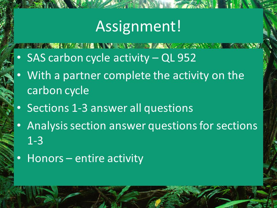 Assignment! SAS carbon cycle activity – QL 952