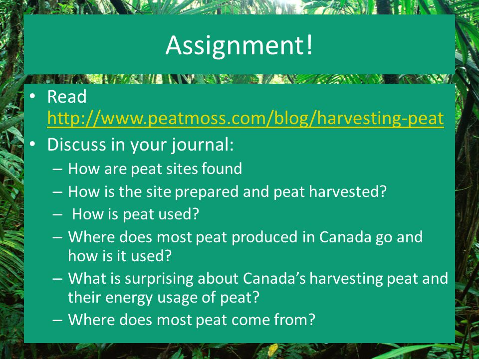 Assignment! Read http://www.peatmoss.com/blog/harvesting-peat