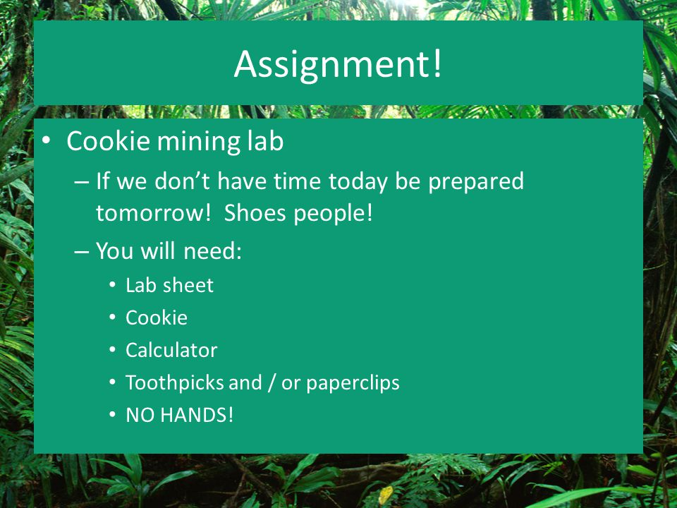 Assignment! Cookie mining lab