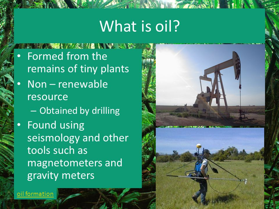 What is oil Formed from the remains of tiny plants