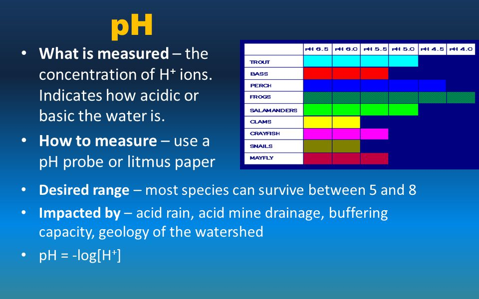 pH What is measured – the concentration of H+ ions. Indicates how acidic or basic the water is. How to measure – use a pH probe or litmus paper.