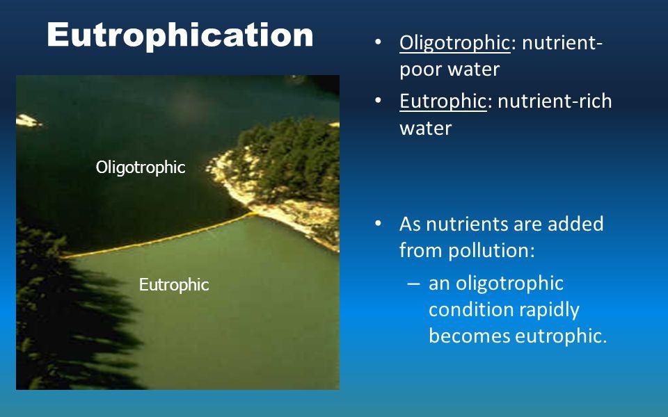 Eutrophication Oligotrophic: nutrient-poor water