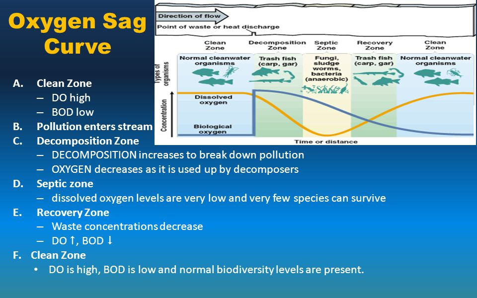 Oxygen Sag Curve Clean Zone DO high BOD low Pollution enters stream