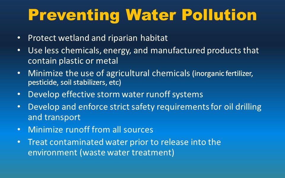 pollution prevention essay