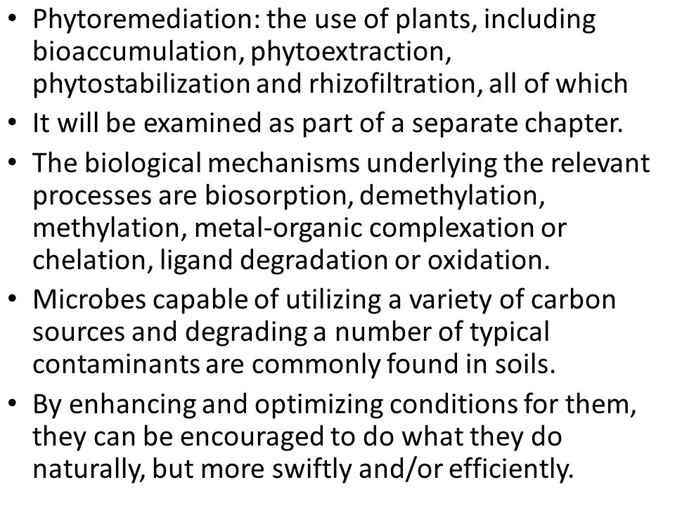 Phytoremediation: the use of plants, including bioaccumulation, phytoextraction, phytostabilization and rhizofiltration, all of which