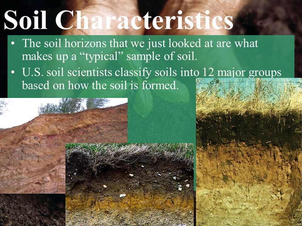 Soil Characteristics The soil horizons that we just looked at are what makes up a typical sample of soil.
