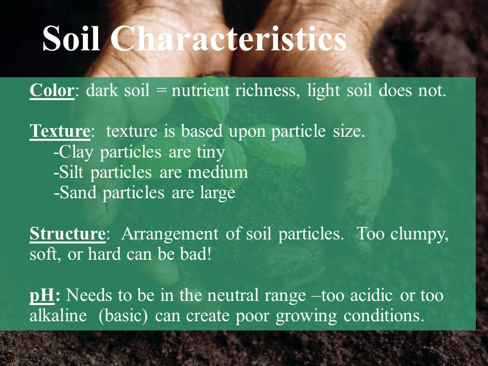 Soil Characteristics Color: dark soil = nutrient richness, light soil does not. Texture: texture is based upon particle size.