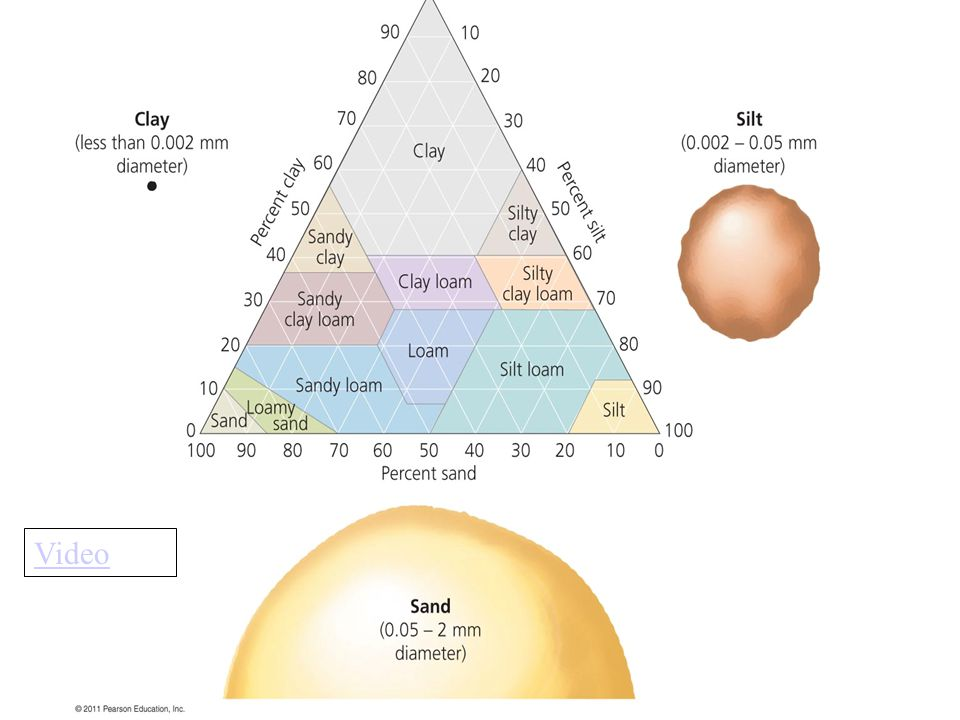 Soil Texture Test by Feel