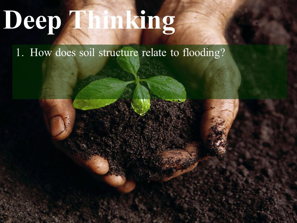 Deep Thinking 1. How does soil structure relate to flooding