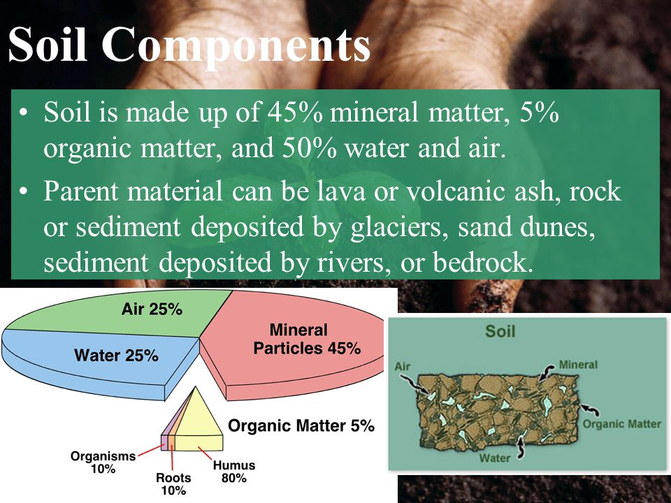 Soil Components Soil is made up of 45% mineral matter, 5% organic matter, and 50% water and air.