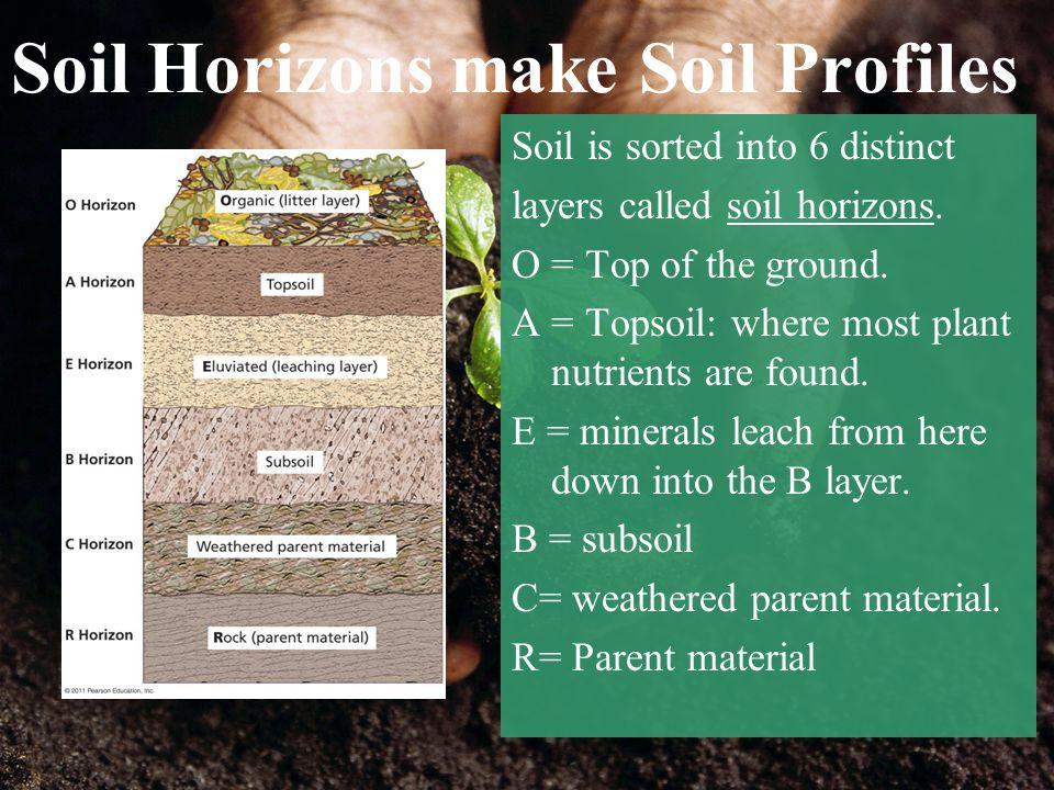 Soil Horizons make Soil Profiles