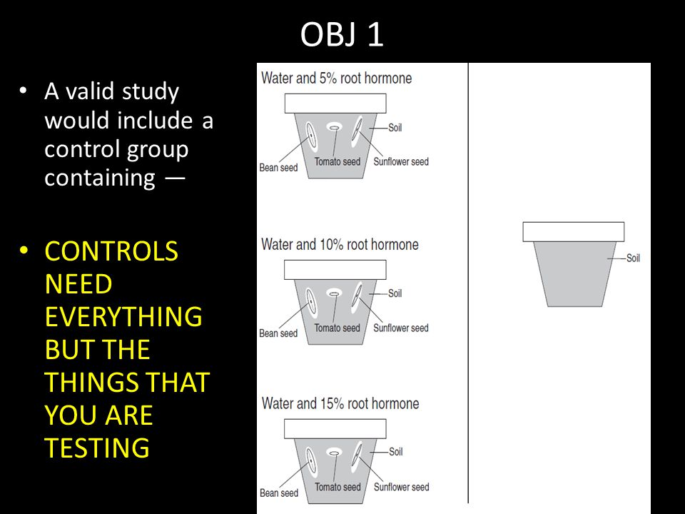 OBJ 1 CONTROLS NEED EVERYTHING BUT THE THINGS THAT YOU ARE TESTING