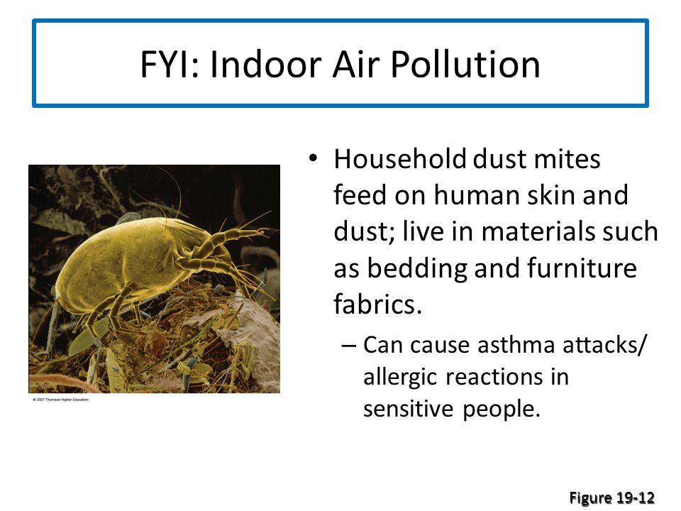 FYI: Indoor Air Pollution