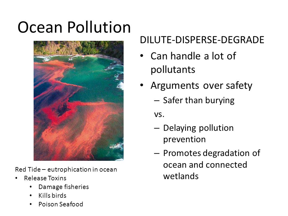 Ocean Pollution DILUTE-DISPERSE-DEGRADE Can handle a lot of pollutants