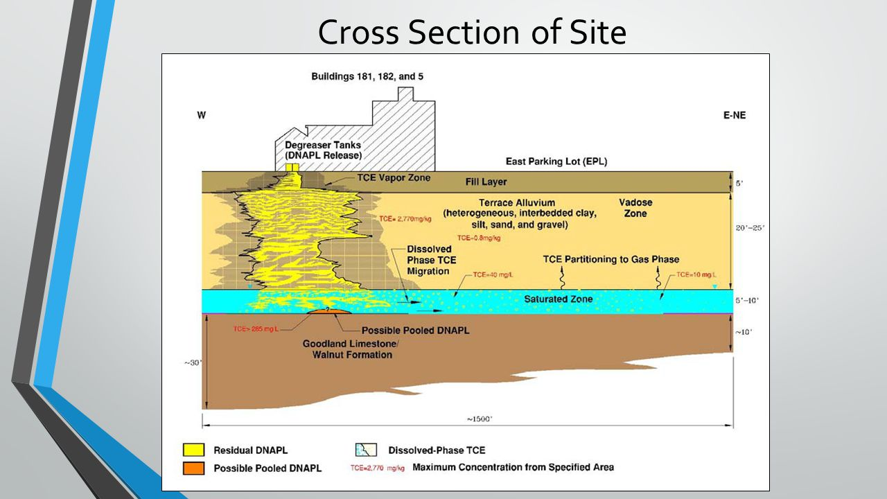 Cross Section of Site