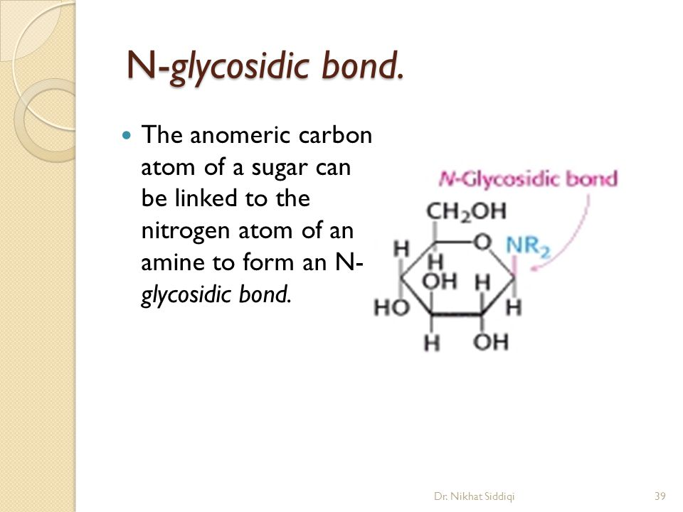 N-glycosidic bond. The anomeric carbon atom of a sugar can be linked to the nitrogen atom of an amine to form an N- glycosidic bond.