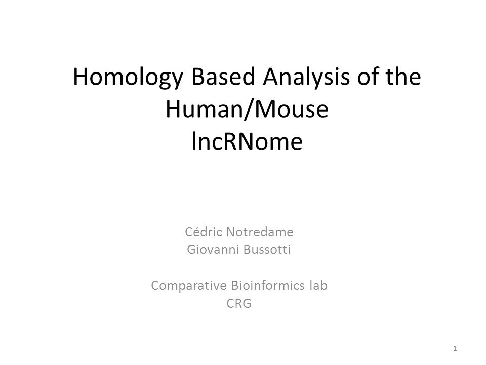 Homology Based Analysis of the Human/Mouse lncRNome