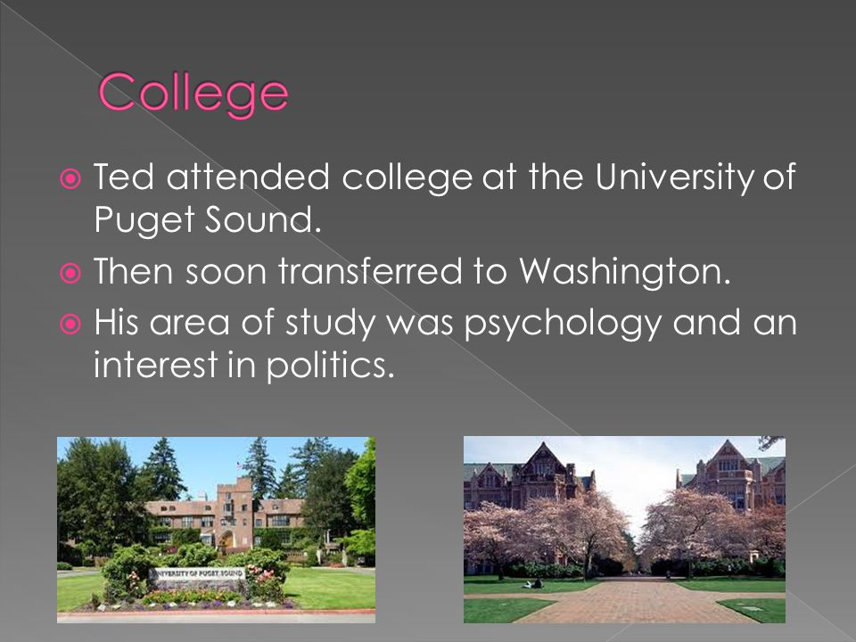 College Ted attended college at the University of Puget Sound.
