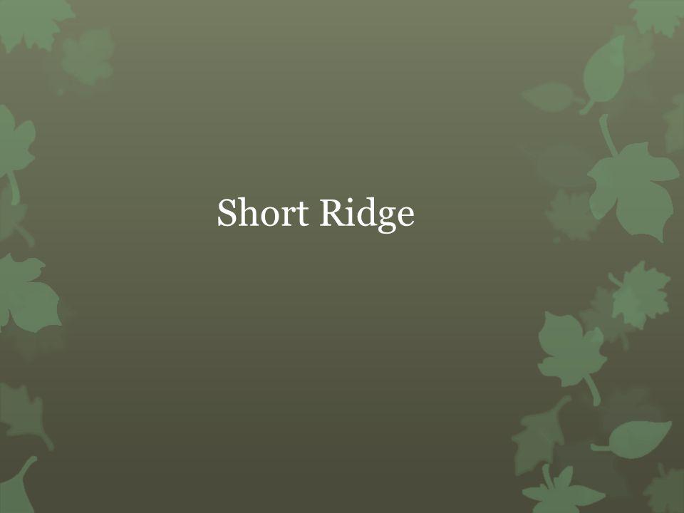 Short Ridge