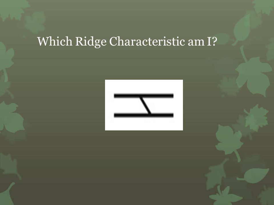 Which Ridge Characteristic am I