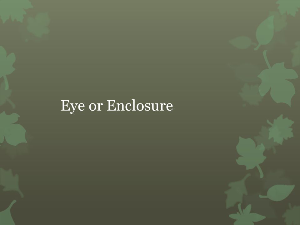 Eye or Enclosure