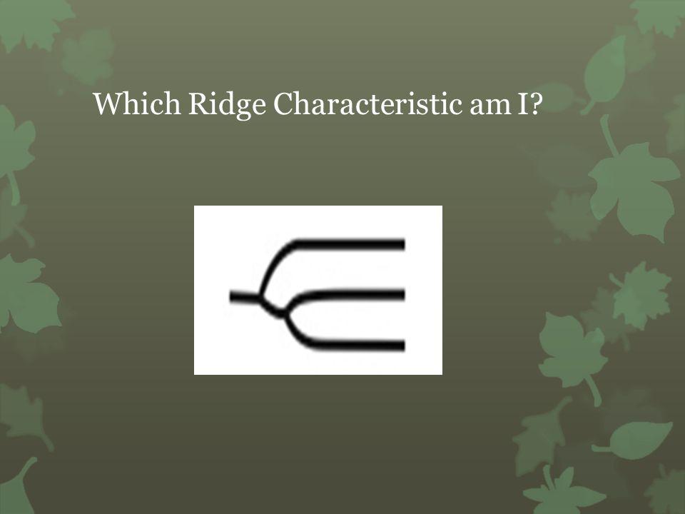 Which Ridge Characteristic am I