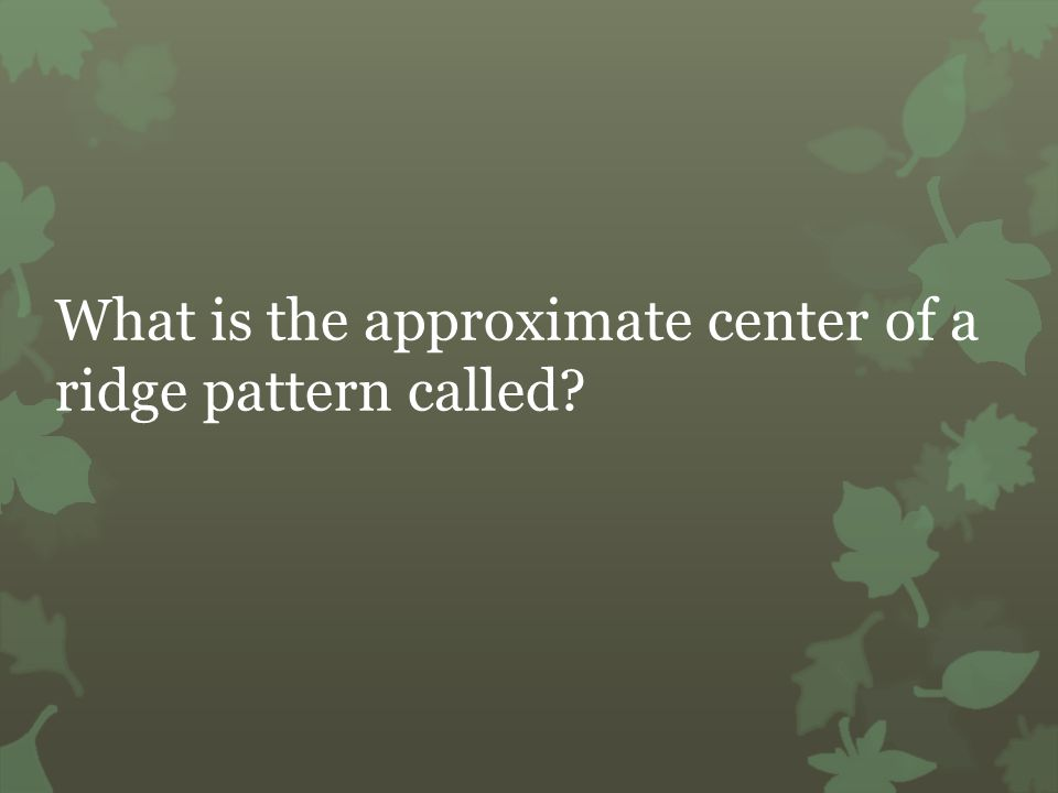 What is the approximate center of a ridge pattern called