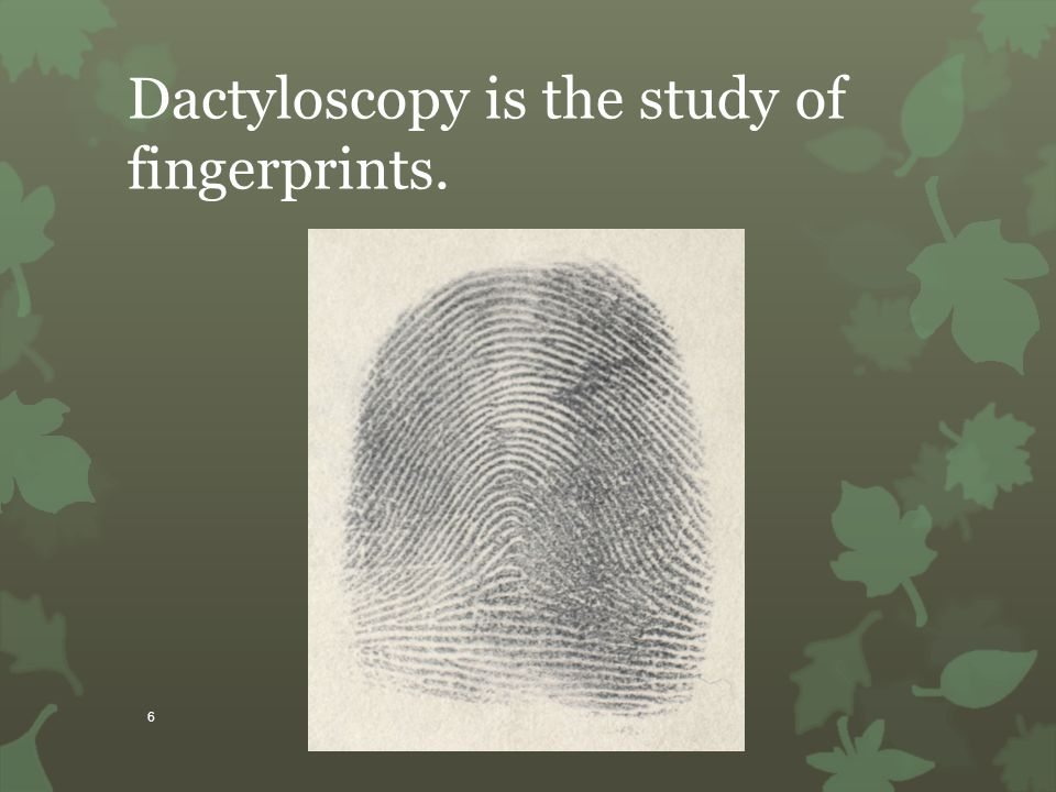 Dactyloscopy is the study of fingerprints.