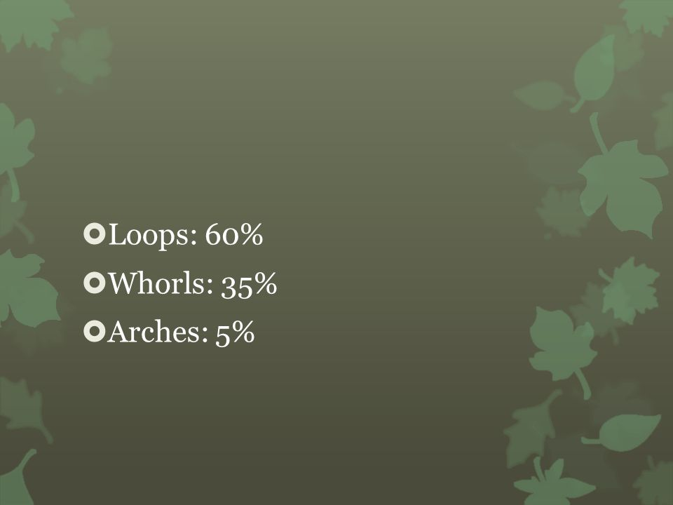 Loops: 60% Whorls: 35% Arches: 5%