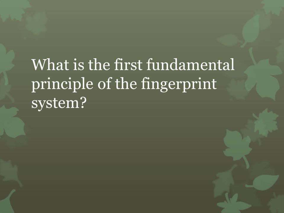What is the first fundamental principle of the fingerprint system