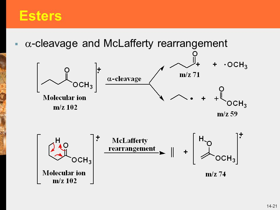 Esters -cleavage and McLafferty rearrangement