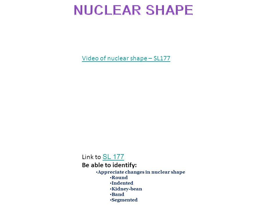 NUCLEAR SHAPE Video of nuclear shape – SL177 Link to SL 177