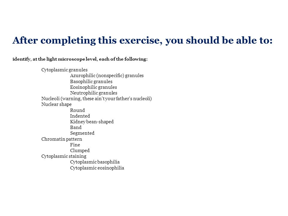 After completing this exercise, you should be able to: