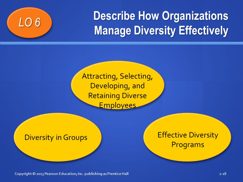 Describe How Organizations Manage Diversity Effectively