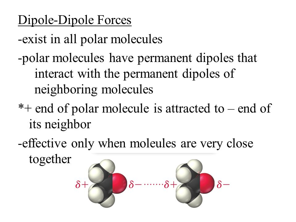 Dipole-Dipole Forces -exist in all polar molecules -polar molecules have permanent dipoles that interact with the permanent dipoles of neighboring molecules *+ end of polar molecule is attracted to – end of its neighbor -effective only when moleules are very close together