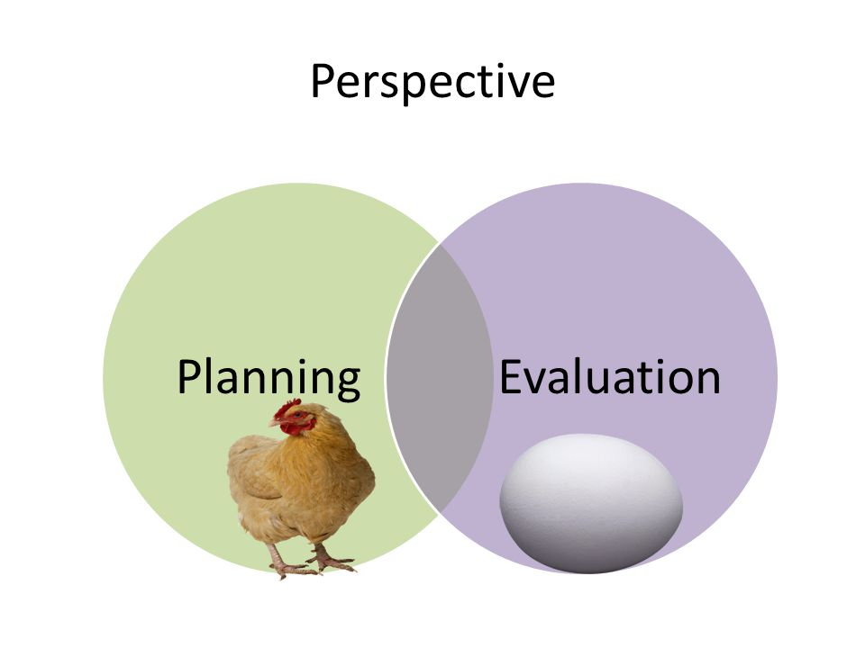 Perspective Planning Evaluation